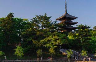 「奈良の贅沢時間」展を終えて